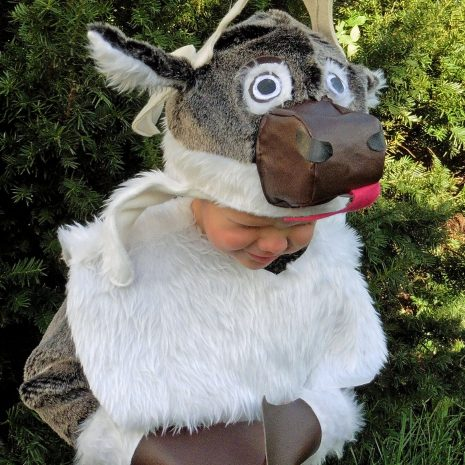 Free SVEN Inspired Reindeer Costume Tutorial & Pattern Pieces. #frozen #Halloween #dressup #diy #eymm #free