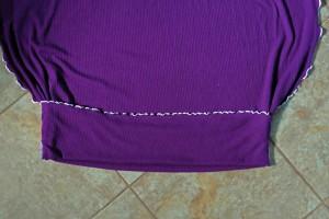 P1050675cropweb